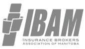 IBAM Logo